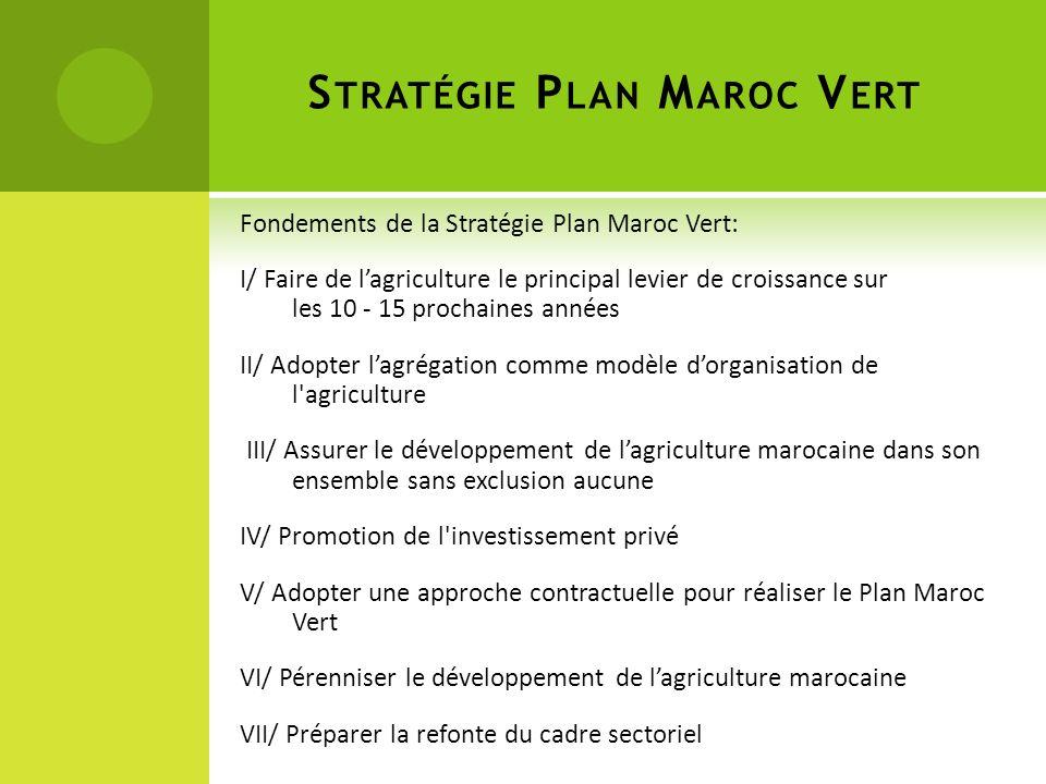 Fondements de la Stratégie Plan Maroc Vert: I/ Faire de lagriculture le principal levier de croissance sur les 10 - 15 prochaines années II/ Adopter lagrégation comme modèle dorganisation de l agriculture III/ Assurer le développement de lagriculture marocaine dans son ensemble sans exclusion aucune IV/ Promotion de l investissement privé V/ Adopter une approche contractuelle pour réaliser le Plan Maroc Vert VI/ Pérenniser le développement de lagriculture marocaine VII/ Préparer la refonte du cadre sectoriel S TRATÉGIE P LAN M AROC V ERT