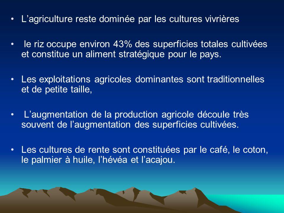Lagriculture reste dominée par les cultures vivrières le riz occupe environ 43% des superficies totales cultivées et constitue un aliment stratégique