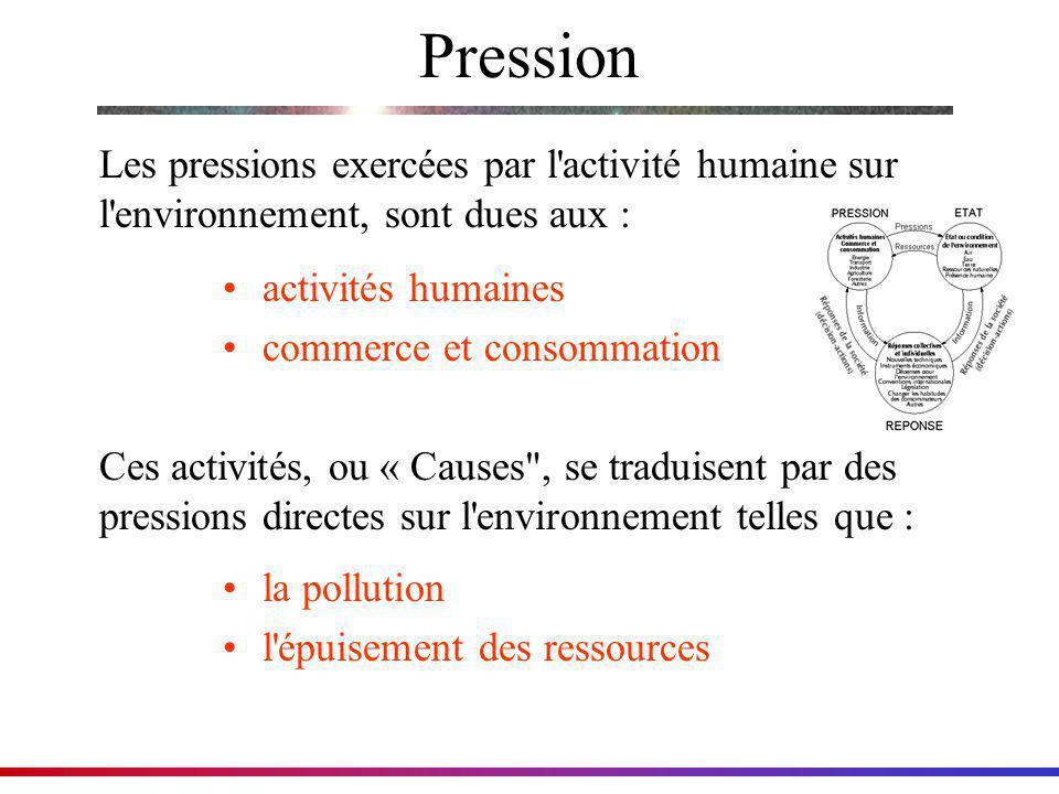 Pression activités humaines commerce et consommation Les pressions exercées par l'activité humaine sur l'environnement, sont dues aux : Ces activités,