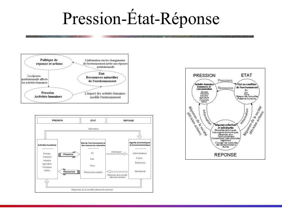 Il existe plusieurs diagrammes différents qui illustrent PSR Pression-État-Réponse