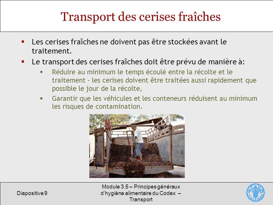Diapositive 9 Module 3.5 – Principes généraux dhygiène alimentaire du Codex – Transport Transport des cerises fraîches Les cerises fraîches ne doivent pas être stockées avant le traitement.