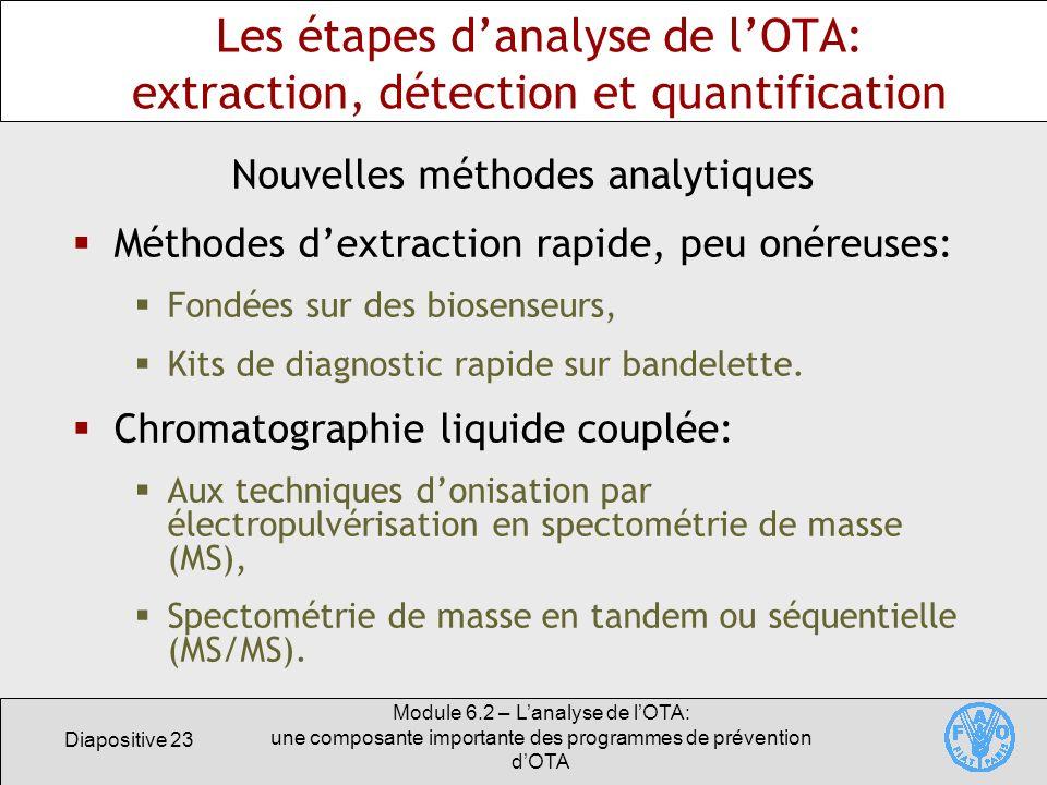 Diapositive 23 Module 6.2 – Lanalyse de lOTA: une composante importante des programmes de prévention dOTA Les étapes danalyse de lOTA: extraction, dét