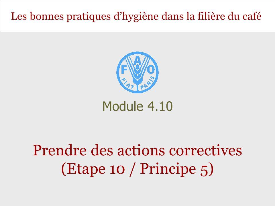 Les bonnes pratiques dhygiène dans la filière du café Prendre des actions correctives (Etape 10 / Principe 5) Module 4.10