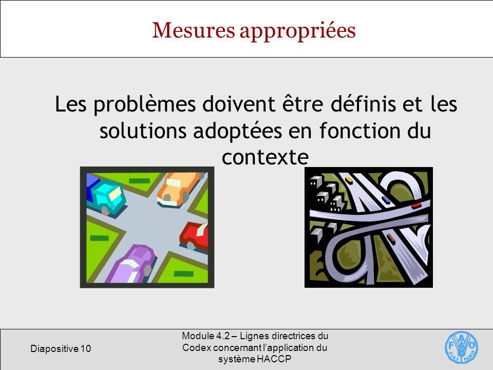 Diapositive 10 Module 4.2 – Lignes directrices du Codex concernant lapplication du système HACCP Mesures appropriées Les problèmes doivent être défini