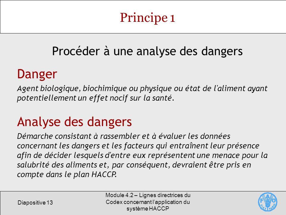 Diapositive 13 Module 4.2 – Lignes directrices du Codex concernant lapplication du système HACCP Principe 1 Procéder à une analyse des dangers Analyse