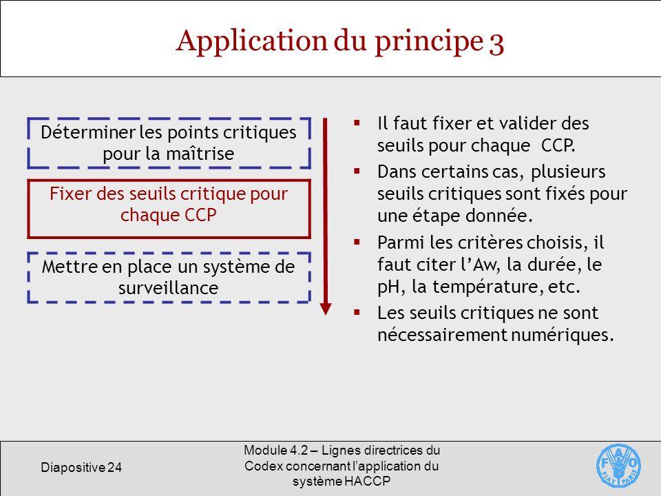 Diapositive 24 Module 4.2 – Lignes directrices du Codex concernant lapplication du système HACCP Application du principe 3 Déterminer les points criti