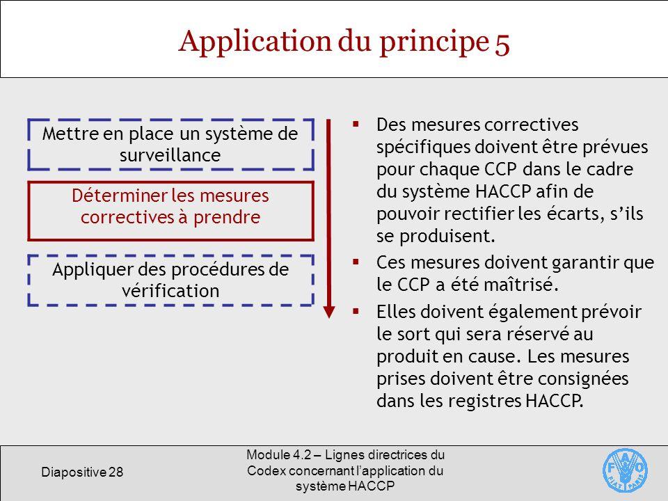 Diapositive 28 Module 4.2 – Lignes directrices du Codex concernant lapplication du système HACCP Application du principe 5 Mettre en place un système