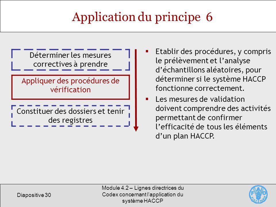 Diapositive 30 Module 4.2 – Lignes directrices du Codex concernant lapplication du système HACCP Application du principe 6 Déterminer les mesures corr