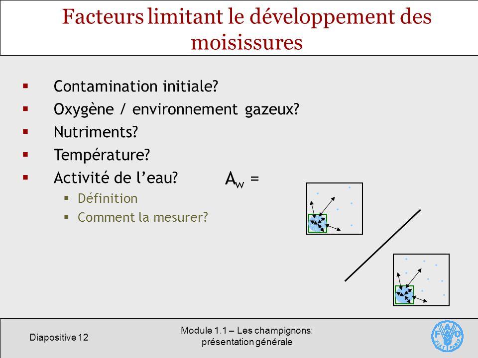 Diapositive 12 Module 1.1 – Les champignons: présentation générale Facteurs limitant le développement des moisissures Contamination initiale? Oxygène