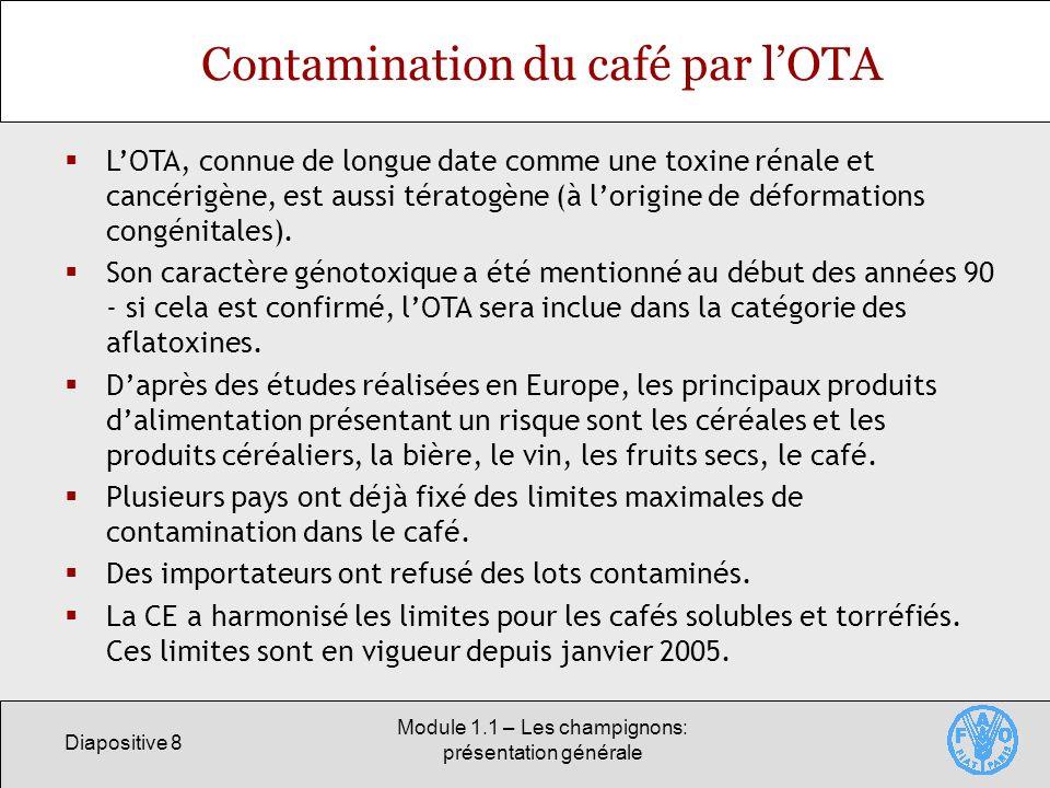 Diapositive 8 Module 1.1 – Les champignons: présentation générale Contamination du café par lOTA LOTA, connue de longue date comme une toxine rénale e