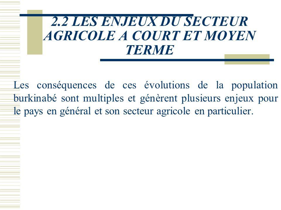 2.2 LES ENJEUX DU SECTEUR AGRICOLE A COURT ET MOYEN TERME Les conséquences de ces évolutions de la population burkinabé sont multiples et génèrent plusieurs enjeux pour le pays en général et son secteur agricole en particulier.