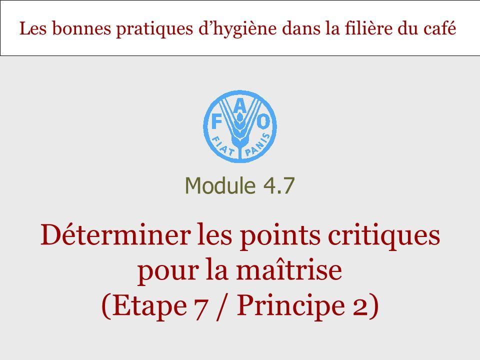 Diapositive 12 Module 4.7 – Déterminer les points critiques pour la maîtrise (Etape 7 /Principe 2) Mesures de maîtrise Une fois tous les dangers analysés, indiquer sur les formulaires 5, 6 et 7 ceux qui sont maîtrisés.