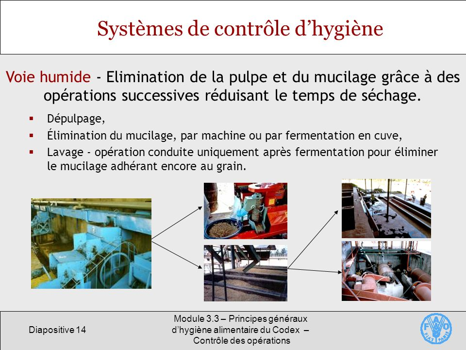 Diapositive 14 Module 3.3 – Principes généraux dhygiène alimentaire du Codex – Contrôle des opérations Voie humide - Elimination de la pulpe et du muc