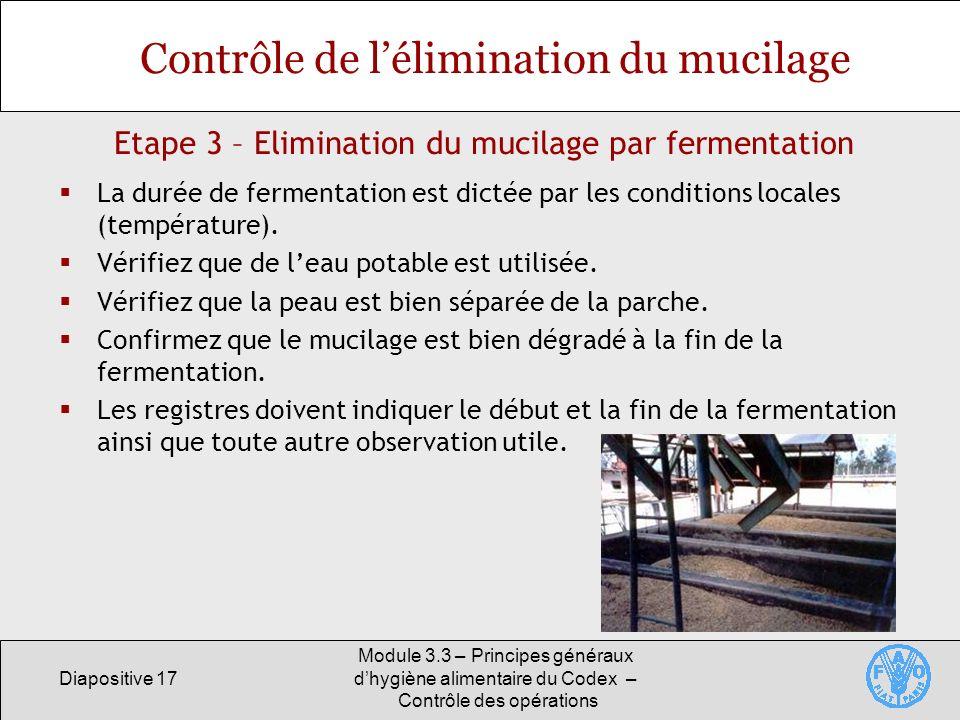 Diapositive 17 Module 3.3 – Principes généraux dhygiène alimentaire du Codex – Contrôle des opérations Etape 3 – Elimination du mucilage par fermentat