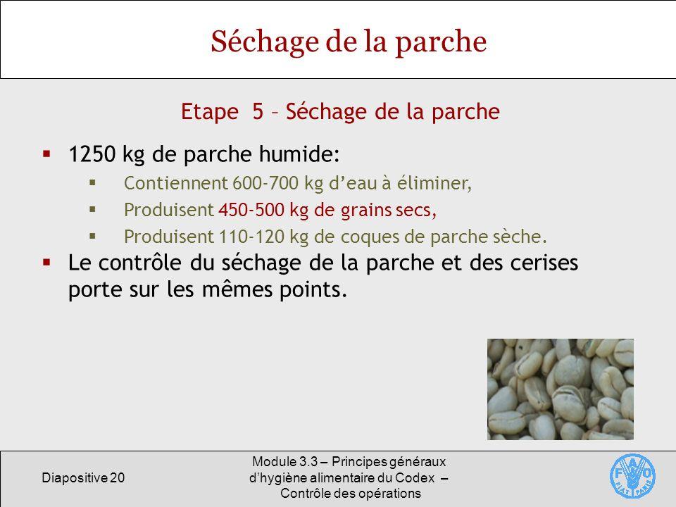 Diapositive 20 Module 3.3 – Principes généraux dhygiène alimentaire du Codex – Contrôle des opérations Etape 5 – Séchage de la parche Séchage de la pa