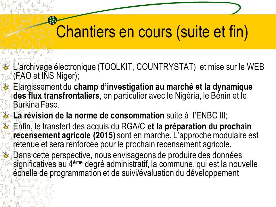 Chantiers en cours (suite et fin) Larchivage électronique (TOOLKIT, COUNTRYSTAT) et mise sur le WEB (FAO et INS Niger); Elargissement du champ dinvestigation au marché et la dynamique des flux transfrontaliers, en particulier avec le Nigéria, le Bénin et le Burkina Faso.