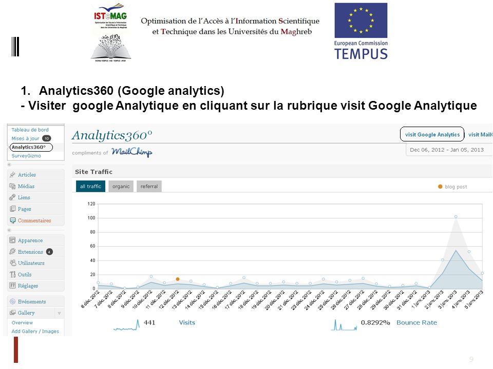 10 1.Sur site Google analytics