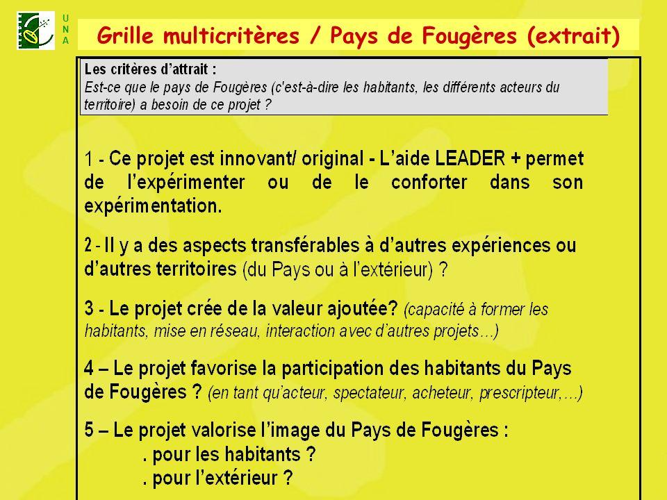 U N A Unité Nationale dAnimation LEADER+ Grille multicritères / Pays de Fougères (extrait)