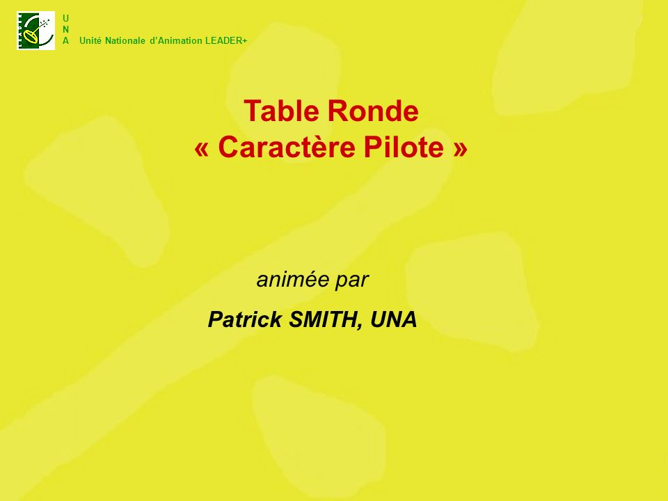 U N A Unité Nationale dAnimation LEADER+ Table Ronde « Caractère Pilote » animée par Patrick SMITH, UNA