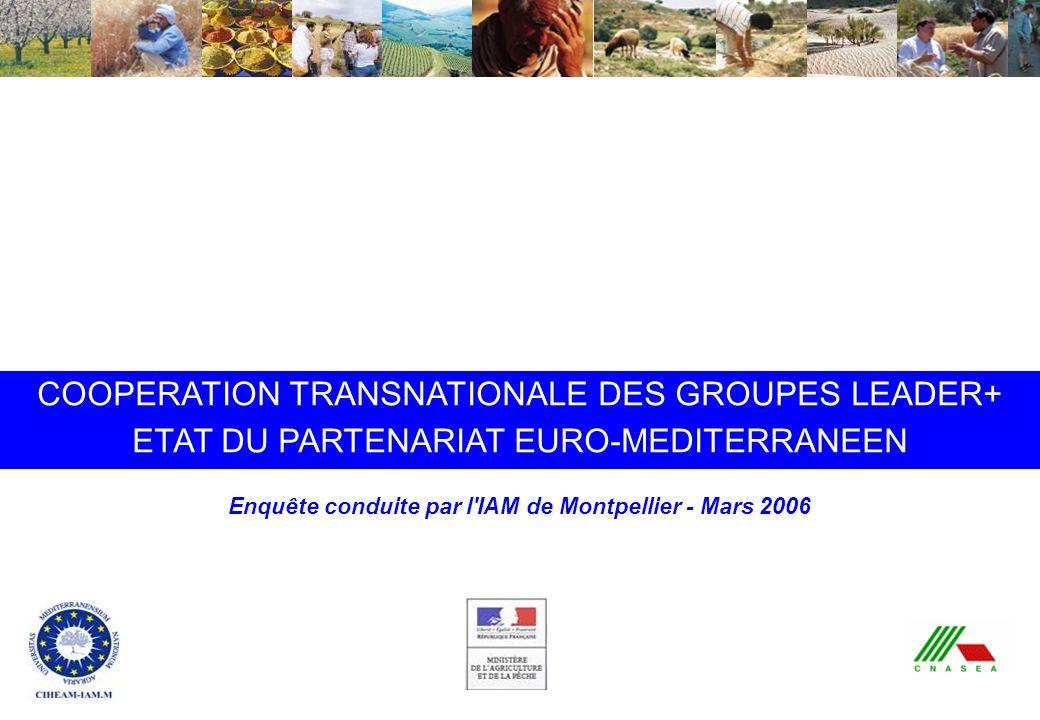 Coopération transnationale Leader+ : état du partenariat euro-méditerranéen - IAMM - Mars 2006 COOPERATION TRANSNATIONALE DES GROUPES LEADER+ ETAT DU PARTENARIAT EURO-MEDITERRANEEN Enquête conduite par l IAM de Montpellier - Mars 2006