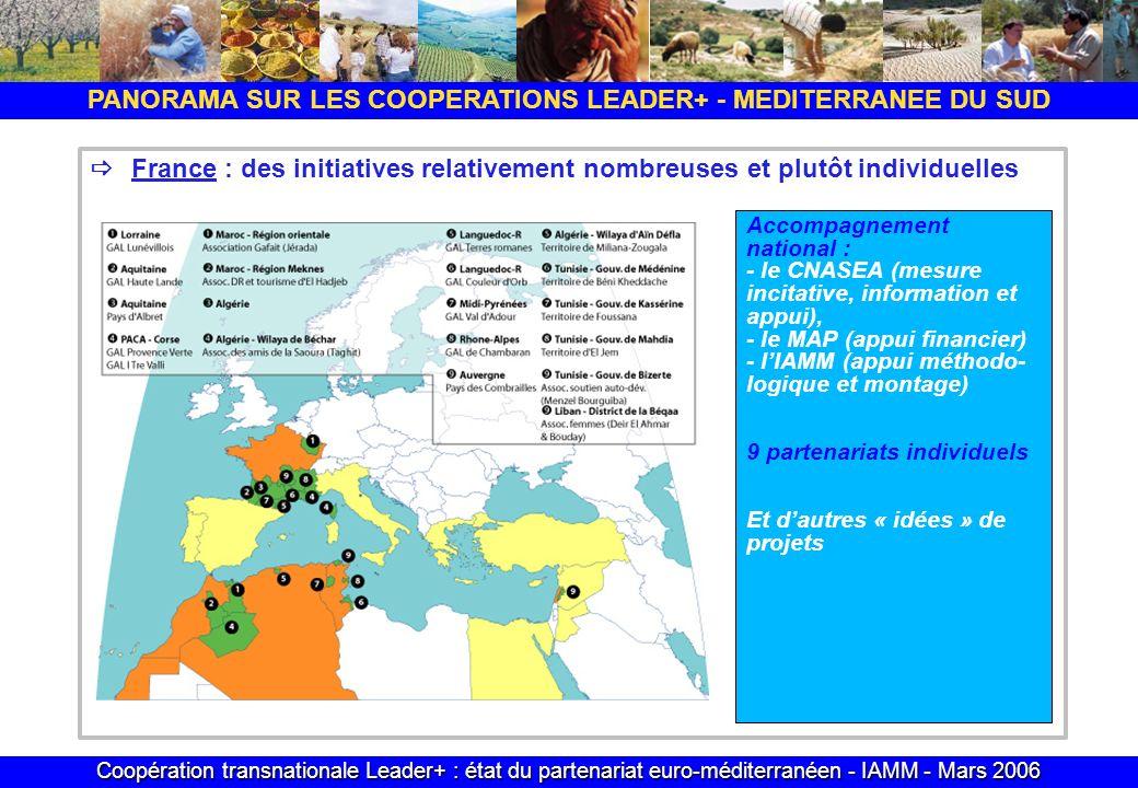 Coopération transnationale Leader+ : état du partenariat euro-méditerranéen - IAMM - Mars 2006 PANORAMA SUR LES COOPERATIONS LEADER+ - MEDITERRANEE DU SUD France : des initiatives relativement nombreuses et plutôt individuelles Accompagnement national : - le CNASEA (mesure incitative, information et appui), - le MAP (appui financier) - lIAMM (appui méthodo- logique et montage) 9 partenariats individuels Et dautres « idées » de projets