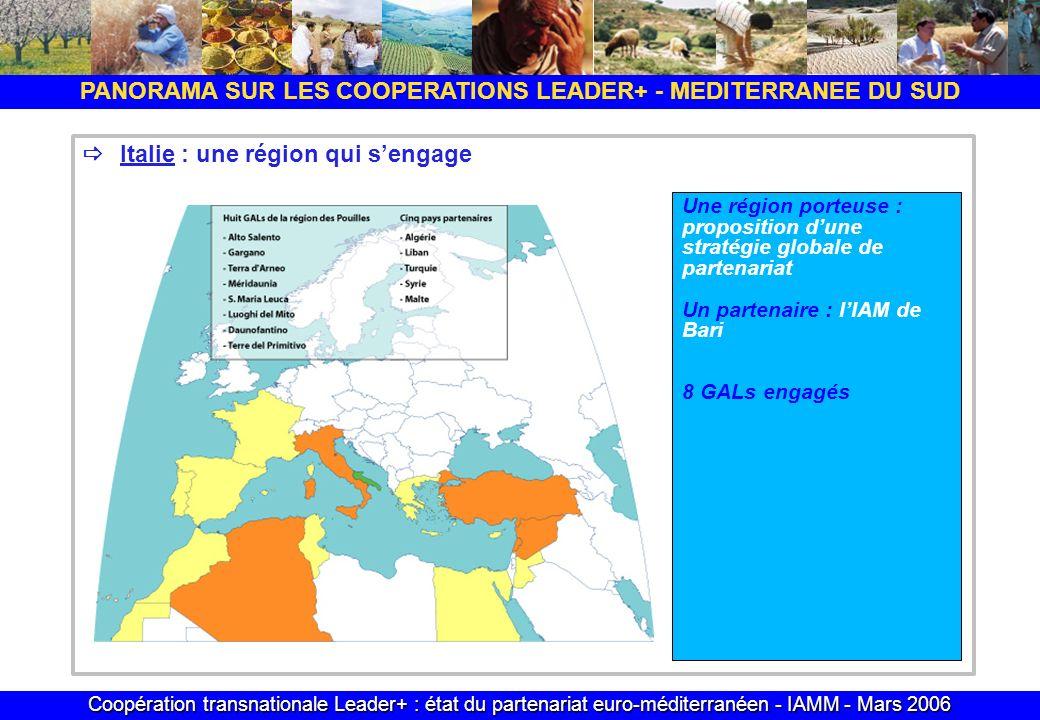 Coopération transnationale Leader+ : état du partenariat euro-méditerranéen - IAMM - Mars 2006 PANORAMA SUR LES COOPERATIONS LEADER+ - MEDITERRANEE DU SUD Italie : une région qui sengage Une région porteuse : proposition dune stratégie globale de partenariat Un partenaire : lIAM de Bari 8 GALs engagés