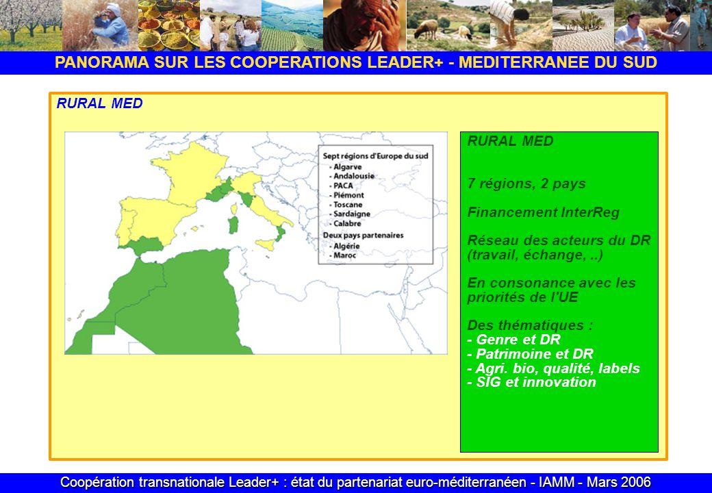 Coopération transnationale Leader+ : état du partenariat euro-méditerranéen - IAMM - Mars 2006 PANORAMA SUR LES COOPERATIONS LEADER+ - MEDITERRANEE DU SUD RURAL MED 7 régions, 2 pays Financement InterReg Réseau des acteurs du DR (travail, échange,..) En consonance avec les priorités de l UE Des thématiques : - Genre et DR - Patrimoine et DR - Agri.