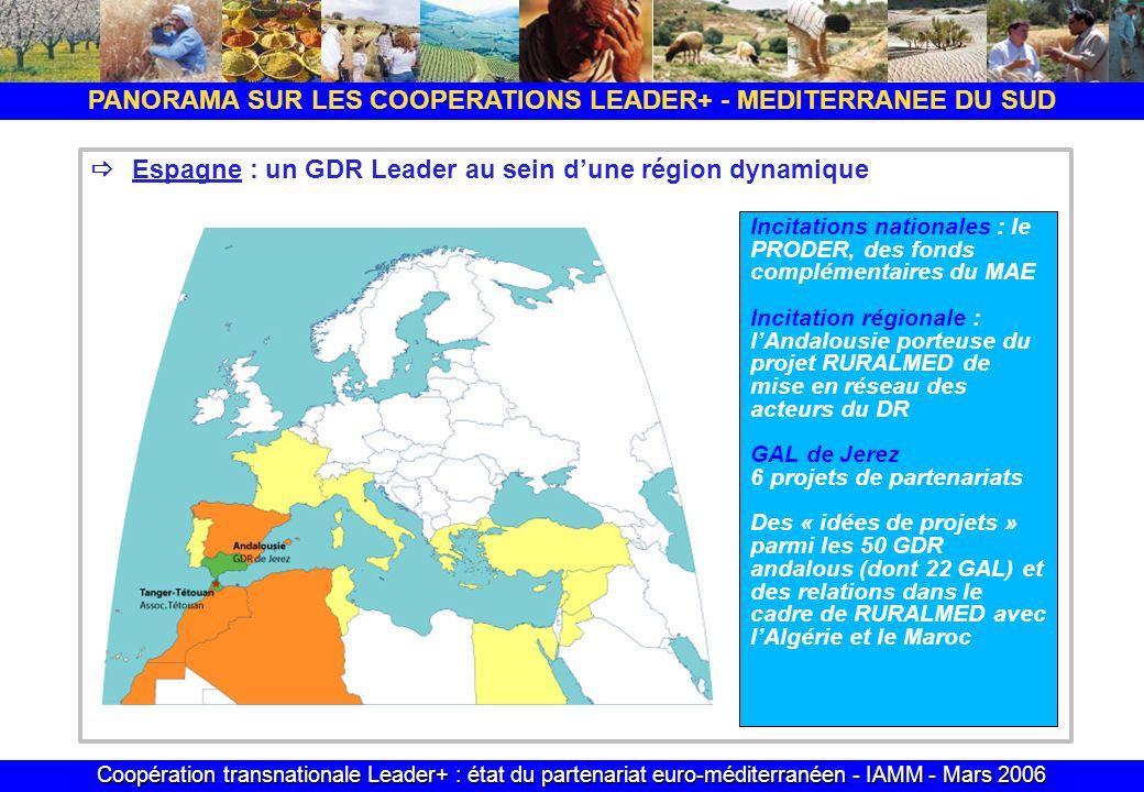 Coopération transnationale Leader+ : état du partenariat euro-méditerranéen - IAMM - Mars 2006 PANORAMA SUR LES COOPERATIONS LEADER+ - MEDITERRANEE DU SUD Espagne : un GDR Leader au sein dune région dynamique Incitations nationales : le PRODER, des fonds complémentaires du MAE Incitation régionale : lAndalousie porteuse du projet RURALMED de mise en réseau des acteurs du DR GAL de Jerez 6 projets de partenariats Des « idées de projets » parmi les 50 GDR andalous (dont 22 GAL) et des relations dans le cadre de RURALMED avec lAlgérie et le Maroc