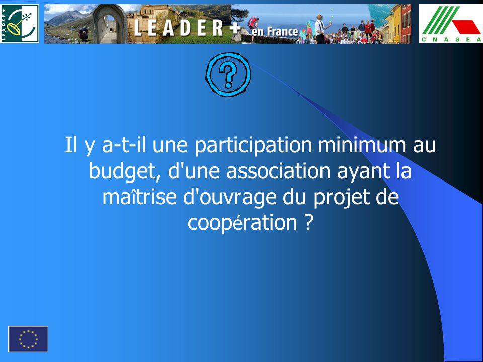 Il y a-t-il une participation minimum au budget, d'une association ayant la ma î trise d'ouvrage du projet de coop é ration ?