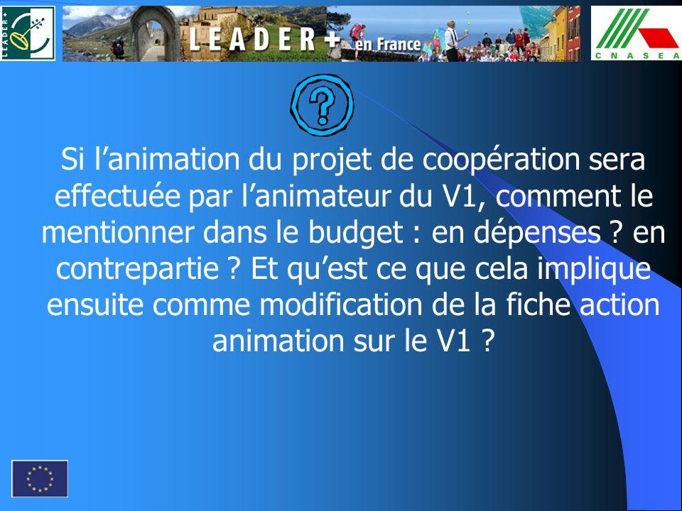 Si lanimation du projet de coopération sera effectuée par lanimateur du V1, comment le mentionner dans le budget : en dépenses ? en contrepartie ? Et