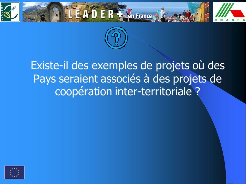 Existe-il des exemples de projets où des Pays seraient associés à des projets de coopération inter-territoriale ?