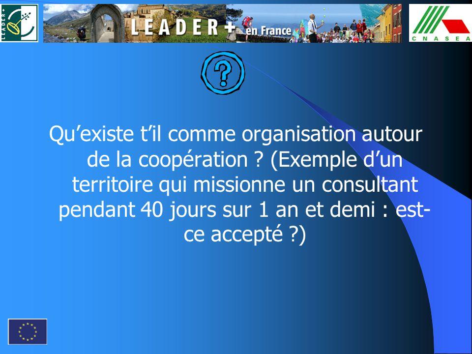 Quexiste til comme organisation autour de la coopération ? (Exemple dun territoire qui missionne un consultant pendant 40 jours sur 1 an et demi : est