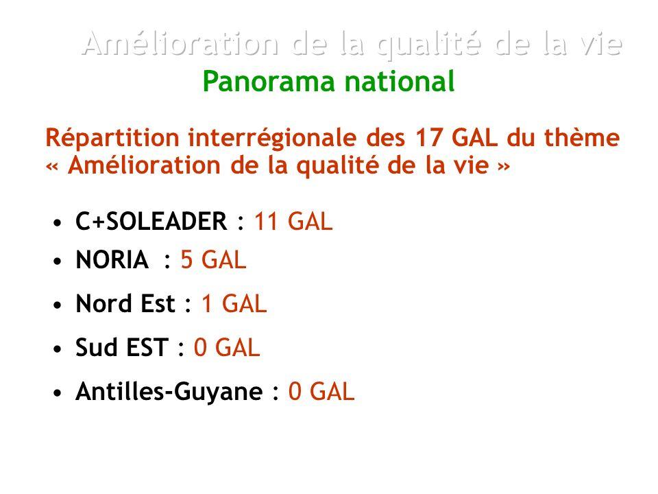 Répartition interrégionale des 17 GAL du thème « Amélioration de la qualité de la vie » Panorama national NORIA : 5 GAL C+SOLEADER : 11 GAL Sud EST : 0 GAL Antilles-Guyane : 0 GAL Nord Est : 1 GAL