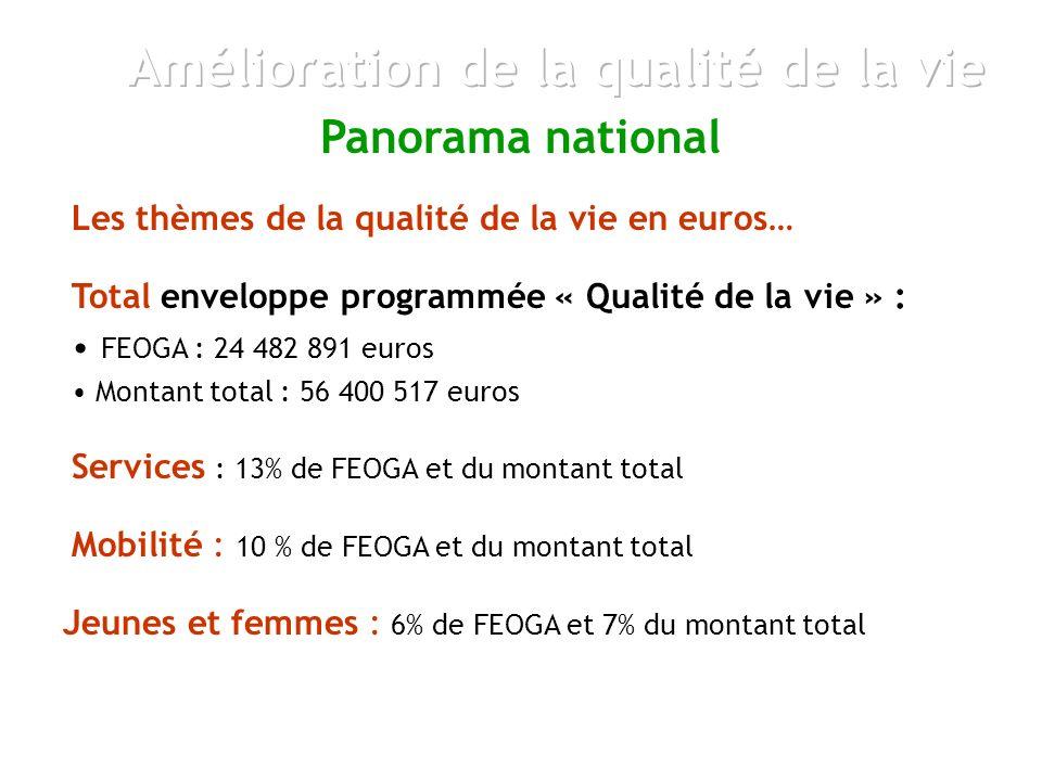 Les thèmes de la qualité de la vie en euros… Panorama national Services : 13% de FEOGA et du montant total Mobilité : 10 % de FEOGA et du montant total Total enveloppe programmée « Qualité de la vie » : FEOGA : 24 482 891 euros Montant total : 56 400 517 euros Jeunes et femmes : 6% de FEOGA et 7% du montant total