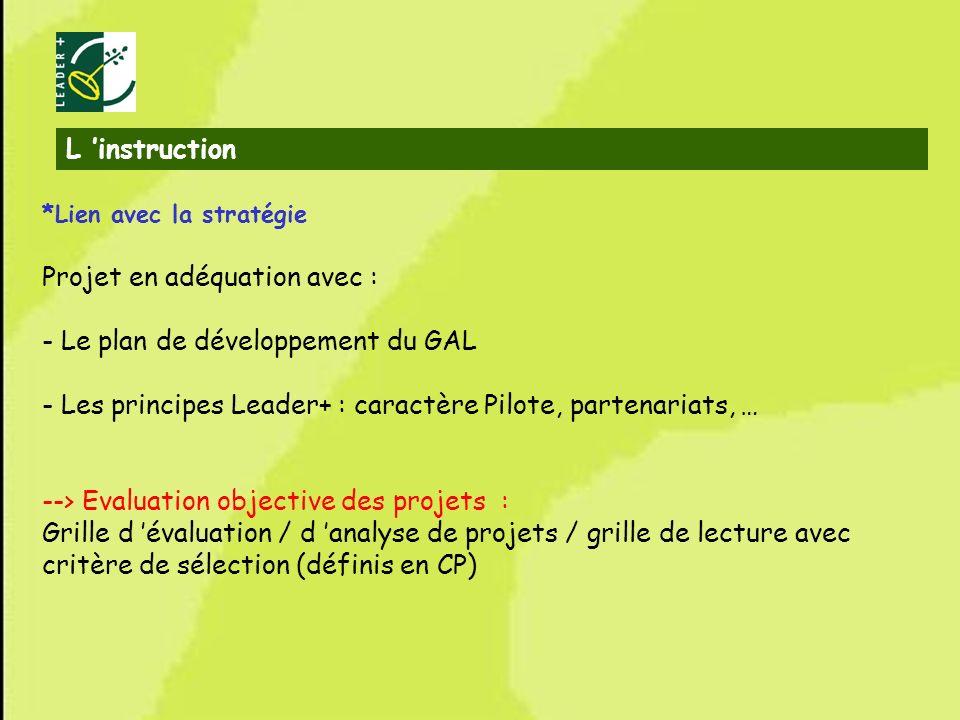 29 *Lien avec la stratégie Projet en adéquation avec : - Le plan de développement du GAL - Les principes Leader+ : caractère Pilote, partenariats, … -