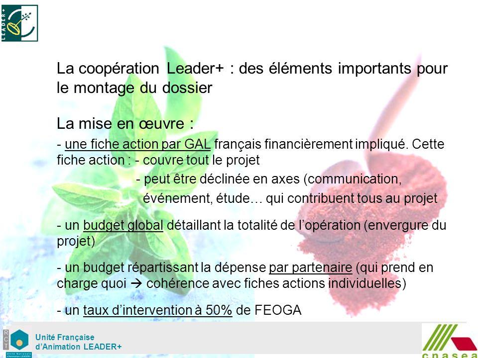 Mardi 02 mai Unité Française dAnimation LEADER+ La coopération Leader+ : des éléments importants pour le montage du dossier La mise en œuvre : - une fiche action par GAL français financièrement impliqué.