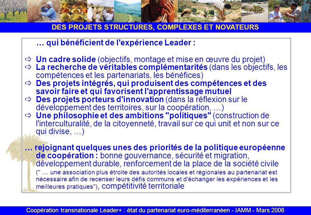 Coopération transnationale Leader+ : état du partenariat euro-méditerranéen - IAMM - Mars 2006 DES PROJETS STRUCTURES, COMPLEXES ET NOVATEURS Un cadre