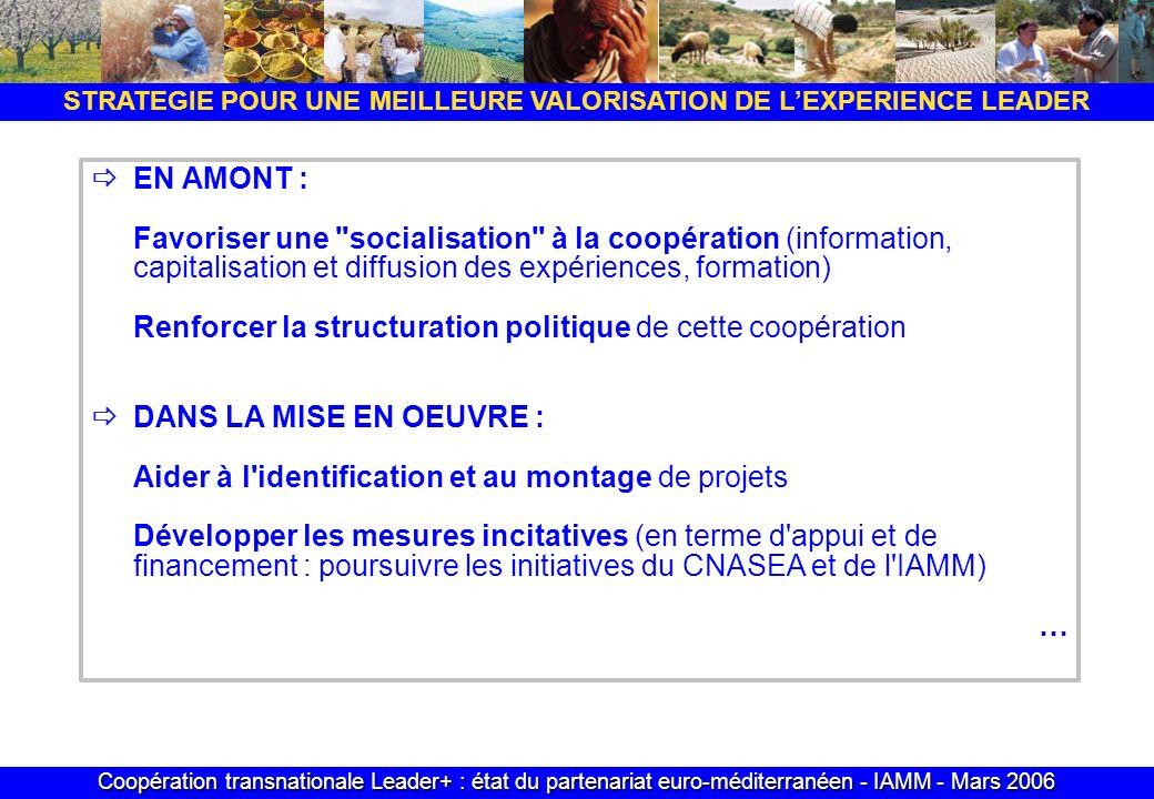 Coopération transnationale Leader+ : état du partenariat euro-méditerranéen - IAMM - Mars 2006 STRATEGIE POUR UNE MEILLEURE VALORISATION DE LEXPERIENC
