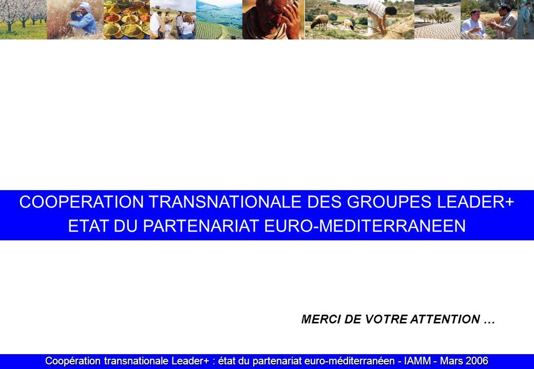 Coopération transnationale Leader+ : état du partenariat euro-méditerranéen - IAMM - Mars 2006 MERCI DE VOTRE ATTENTION … COOPERATION TRANSNATIONALE DES GROUPES LEADER+ ETAT DU PARTENARIAT EURO-MEDITERRANEEN