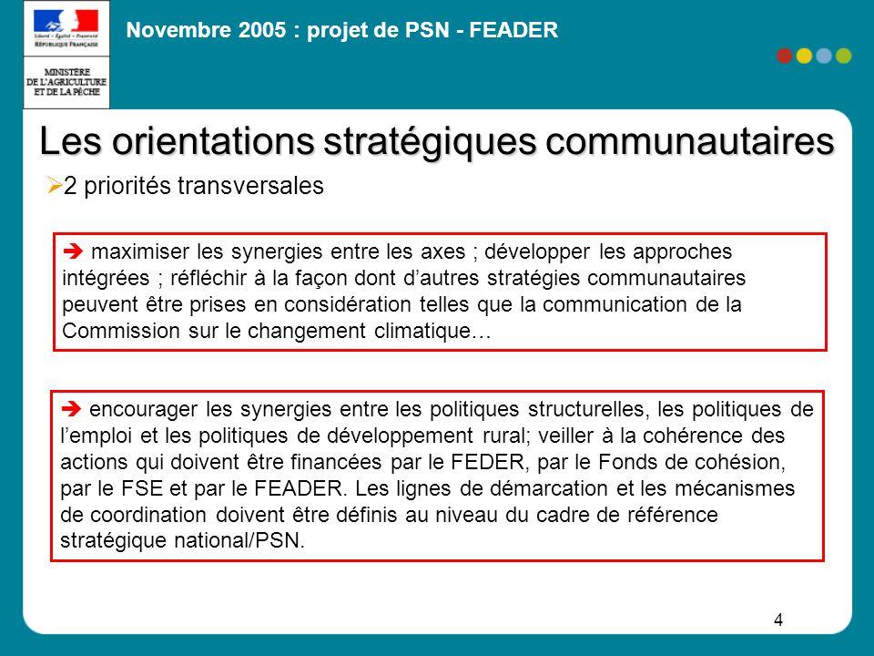 Novembre 2005 : projet de PSN - FEADER 35 FEADER/Fonds structurels (FEDER et FSE) Etablir la ligne de démarcation à préciser dans les programmes critères possibles : taille critique du projet impact territorial du projet (niveau régional, départemental, local) type dinvestissement ou type de bénéficiaire … Moyens de coordination proposition dun comité régional de suivi commun FEADER- FEDER-FSE-FEP (en cas dautorités de gestion différentes : co-pilotage) V- Dispositions techniques