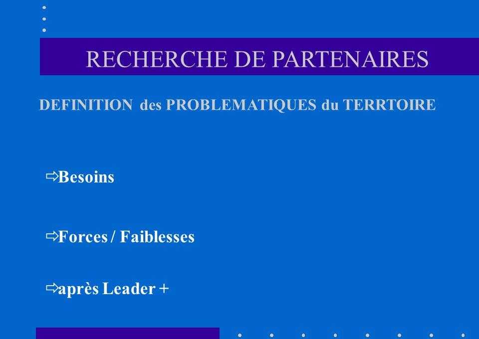 Besoins Forces / Faiblesses après Leader + RECHERCHE DE PARTENAIRES DEFINITION des PROBLEMATIQUES du TERRTOIRE