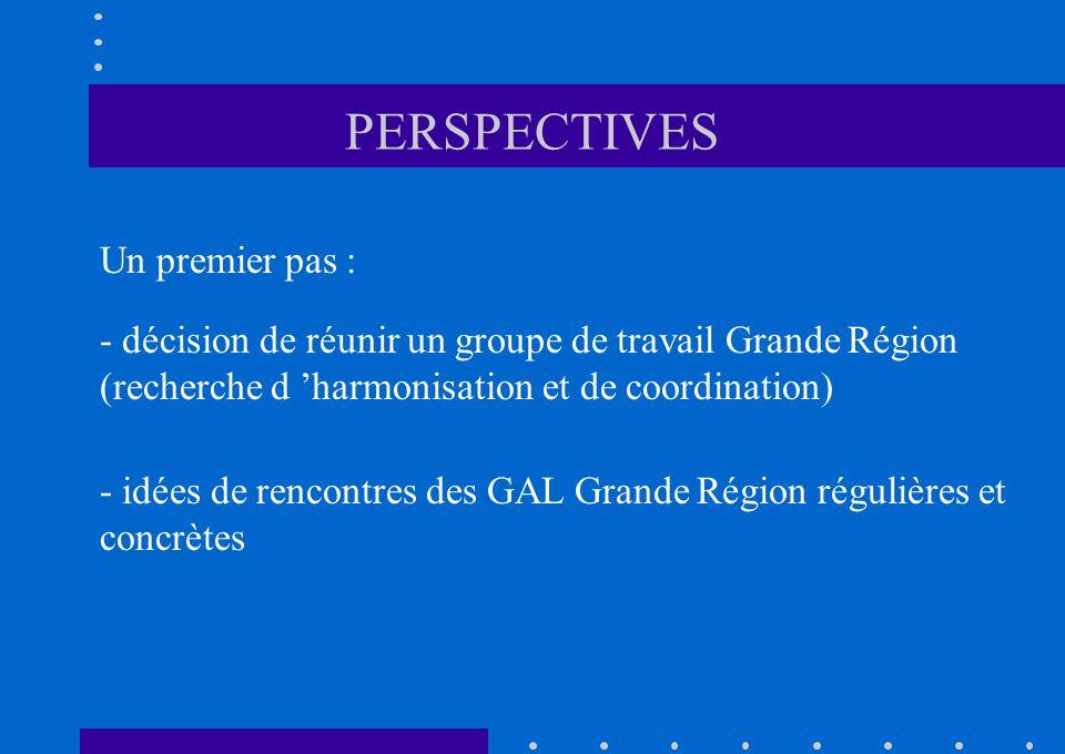PERSPECTIVES Un premier pas : - décision de réunir un groupe de travail Grande Région (recherche d harmonisation et de coordination) - idées de rencontres des GAL Grande Région régulières et concrètes