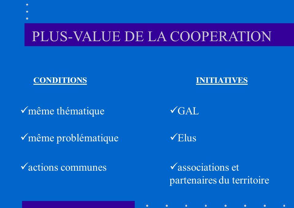 CONDITIONSINITIATIVES même thématique même problématique actions communes Elus GAL associations et partenaires du territoire PLUS-VALUE DE LA COOPERATION