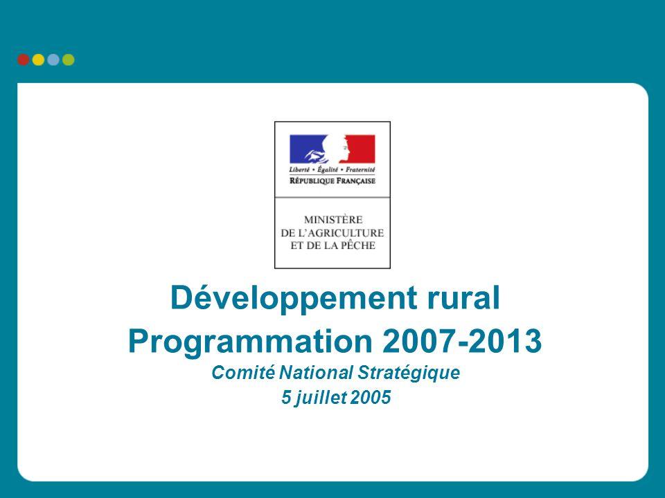 Développement rural Programmation 2007-2013 Comité National Stratégique 5 juillet 2005