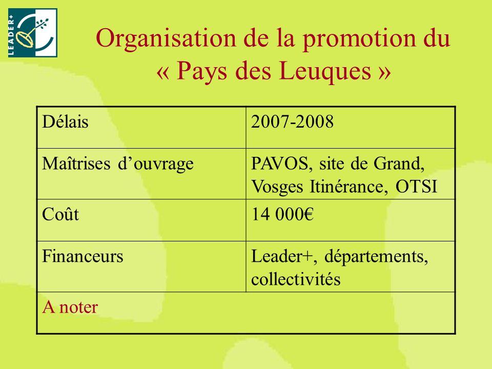 Délais2007-2008 Maîtrises douvragePAVOS, site de Grand, Vosges Itinérance, OTSI Coût14 000 FinanceursLeader+, départements, collectivités A noter Organisation de la promotion du « Pays des Leuques »