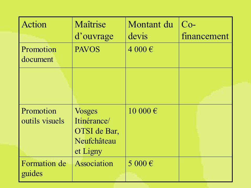 5 000 AssociationFormation de guides 10 000 Vosges Itinérance/ OTSI de Bar, Neufchâteau et Ligny Promotion outils visuels 4 000 PAVOSPromotion document Co- financement Montant du devis Maîtrise douvrage Action