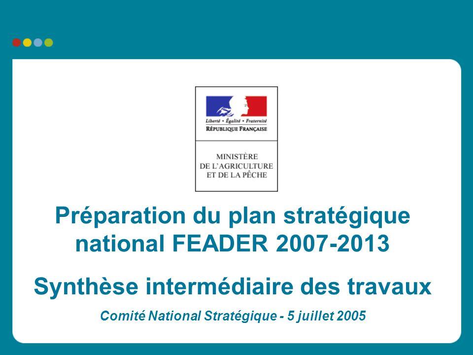 Préparation du plan stratégique national FEADER 2007-2013 Synthèse intermédiaire des travaux Comité National Stratégique - 5 juillet 2005
