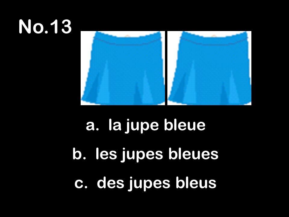 No.13 a. la jupe bleue b. les jupes bleues c. des jupes bleus