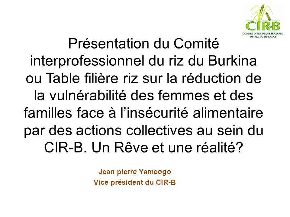 Présentation du Comité interprofessionnel du riz du Burkina ou Table filière riz sur la réduction de la vulnérabilité des femmes et des familles face à linsécurité alimentaire par des actions collectives au sein du CIR-B.