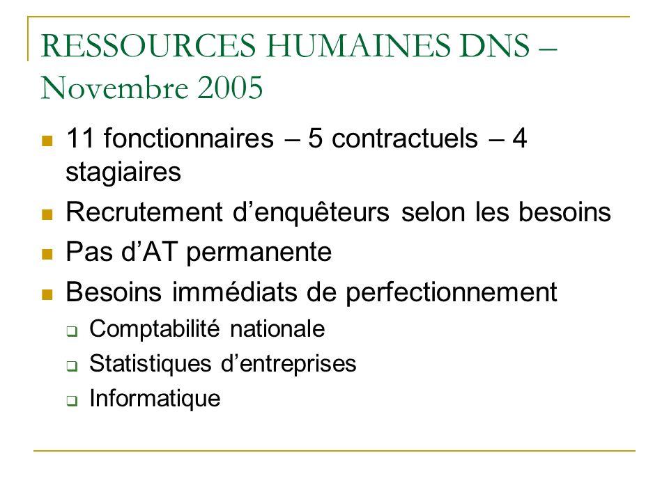 RESSOURCES HUMAINES DNS – Novembre 2005 11 fonctionnaires – 5 contractuels – 4 stagiaires Recrutement denquêteurs selon les besoins Pas dAT permanente Besoins immédiats de perfectionnement Comptabilité nationale Statistiques dentreprises Informatique